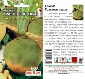 брюква красносельская выращивание и уход