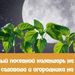 лунный календарь на март 2019 года садовода и огородника цветовода