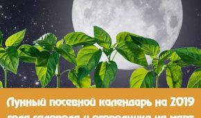 Миниатюра к статье Лунный посевной календарь на март 2019 года для садовода и огородника и цветовода